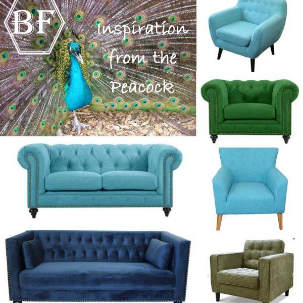 peacock inspiration
